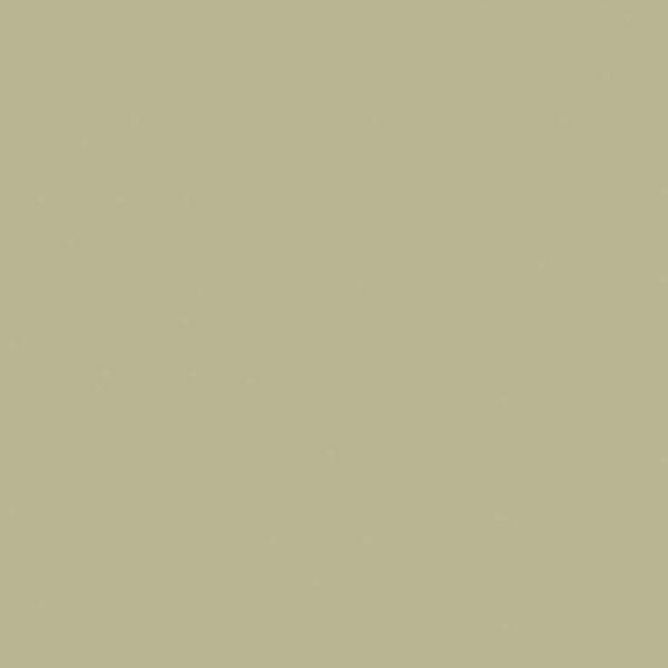 The Little Greene Paint Company Portland Stone Deep (156)