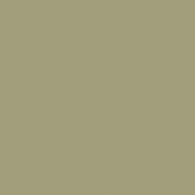 The Little Greene Paint Company Portland Stone Dark (157)
