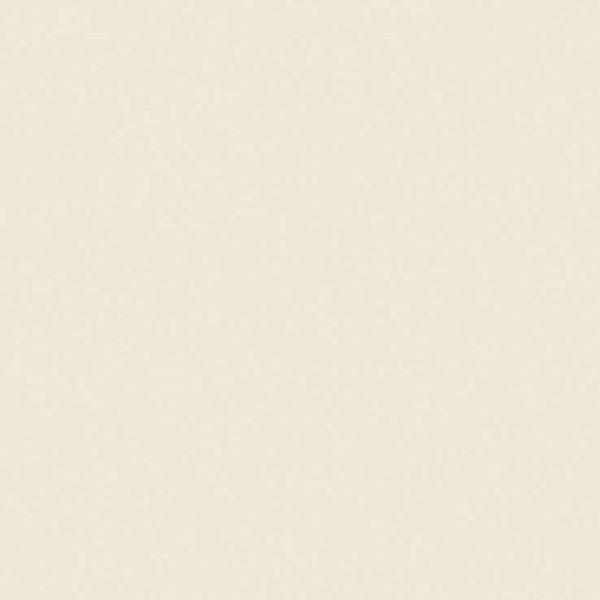 The Little Greene Paint Company Rolling Fog Pale (158)