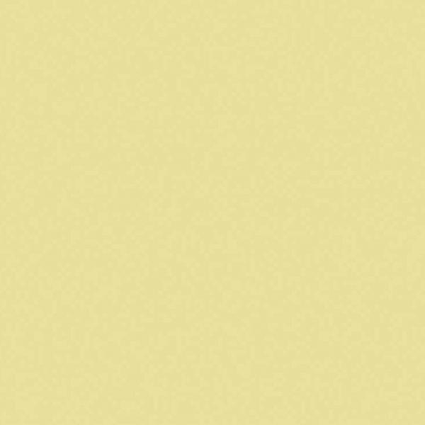 The Little Greene Paint Company White Lead Dark (172)