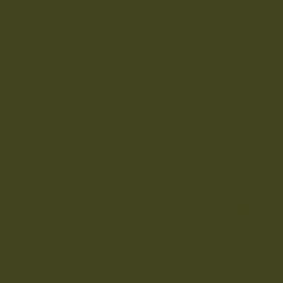 The Little Greene Paint Company Olive Colour (72)