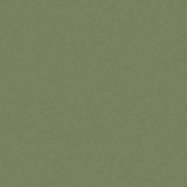 The Little Greene Paint Company Sage Green (80)