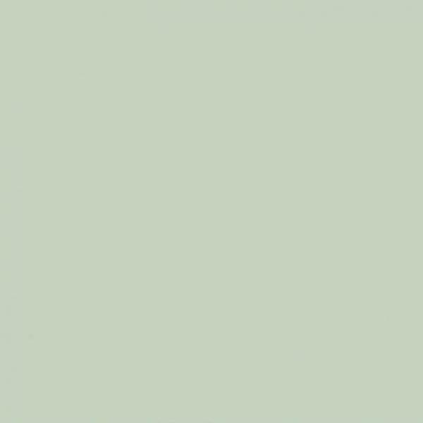 The Little Greene Paint Company Salix (99)