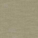 Latte Colour Swatch
