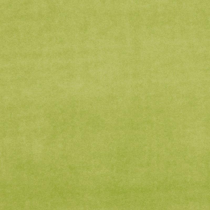 Citron Colour Swatch