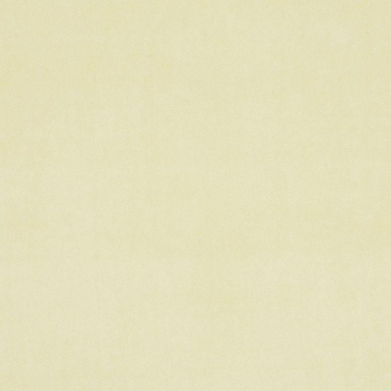 Cream Colour Swatch