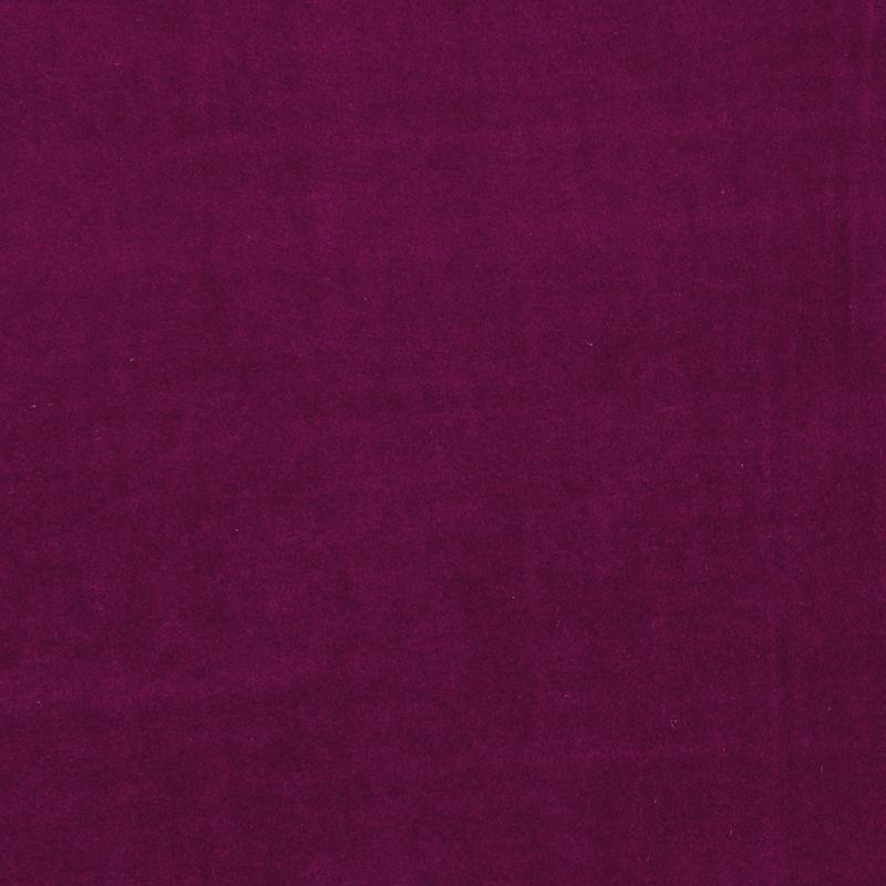 Fuchsia Colour Swatch
