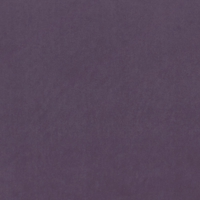 Grape Colour Swatch