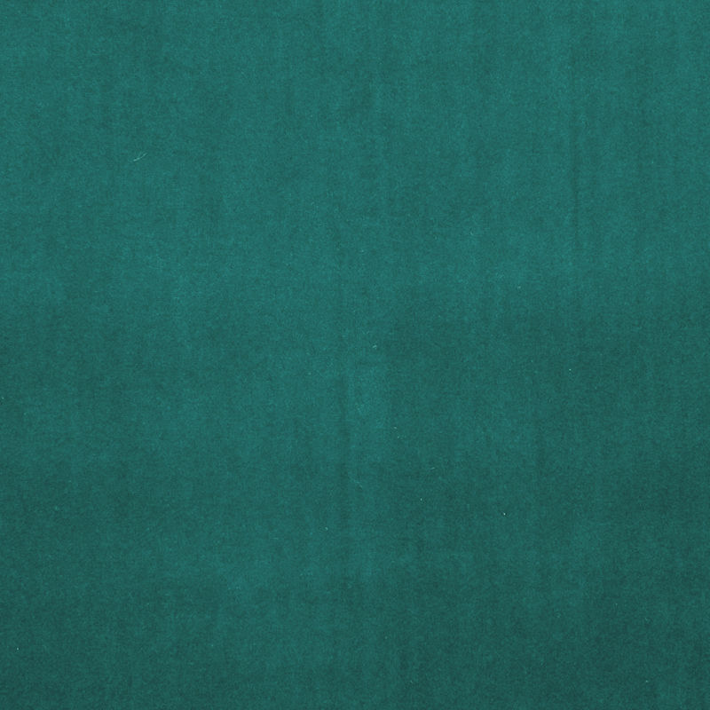 Spruce Colour Swatch