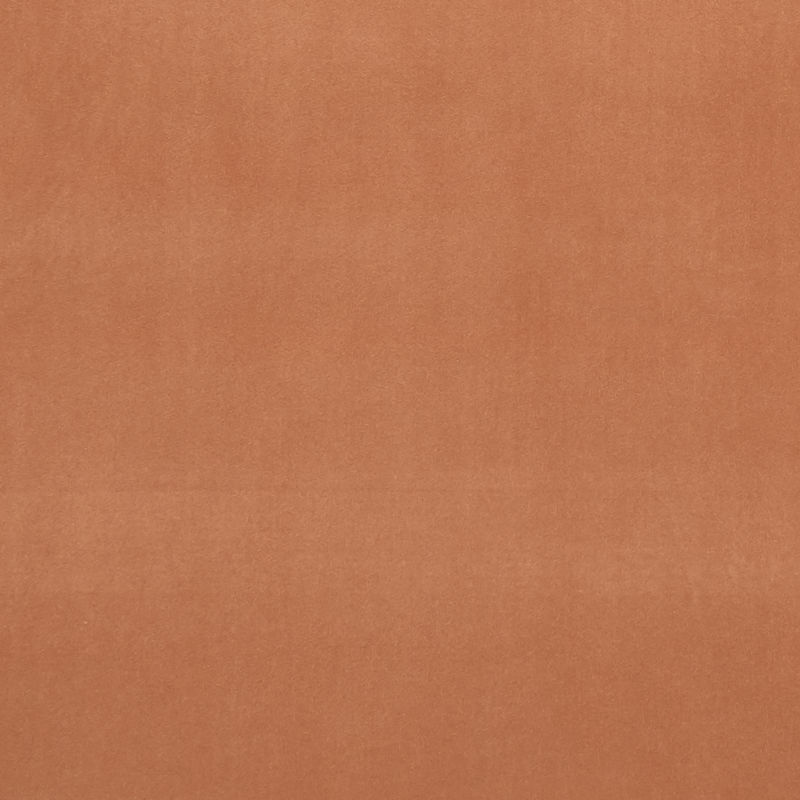 Tamarind Colour Swatch