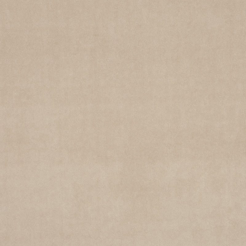 Taupe Colour Swatch