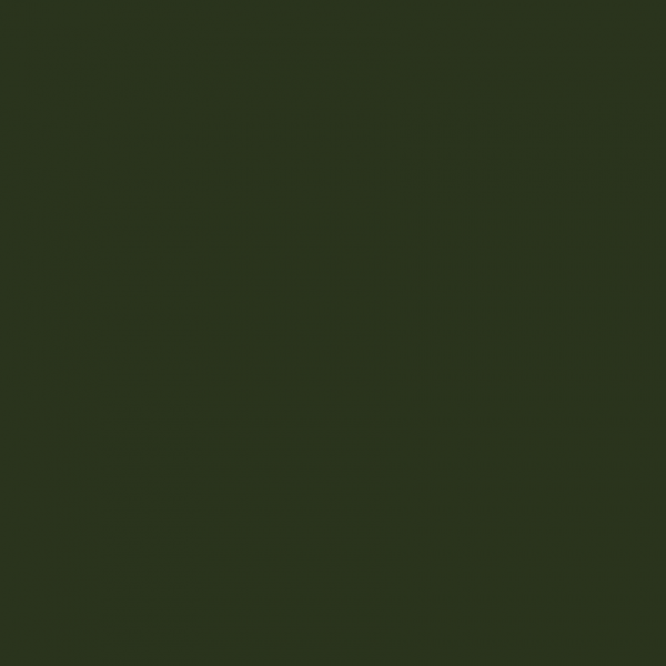 Little Greene Paint Dark Bronze Green