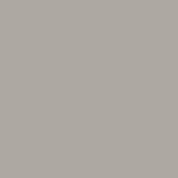 Zoffany Paint Double Silver