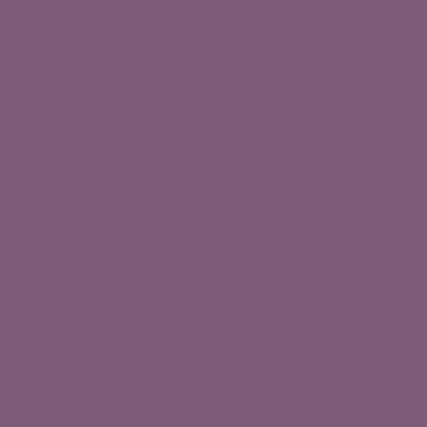 Sanderson Paint Meadow Violet