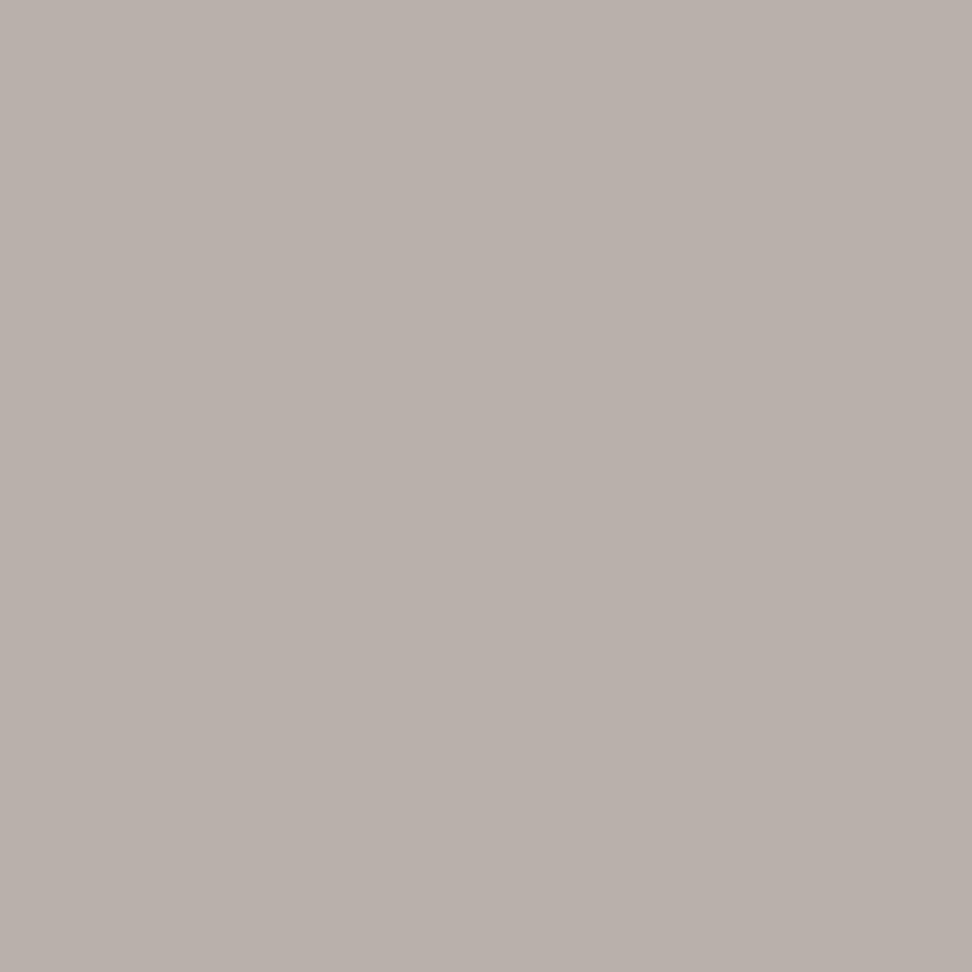 Sanderson Paint Starling