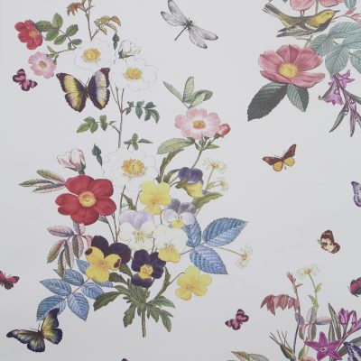 Clarke & Clarke Wallpaper Ava Multi Colourswatch